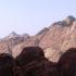 Beda Czcigodny: Głos wołający na pustyni